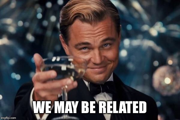 Leonardo Dicaprio Cheers Meme | WE MAY BE RELATED | image tagged in memes,leonardo dicaprio cheers | made w/ Imgflip meme maker