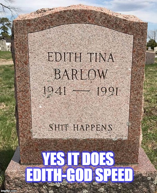 sh*t happens  | YES IT DOES EDITH-GOD SPEED | image tagged in gravestone | made w/ Imgflip meme maker