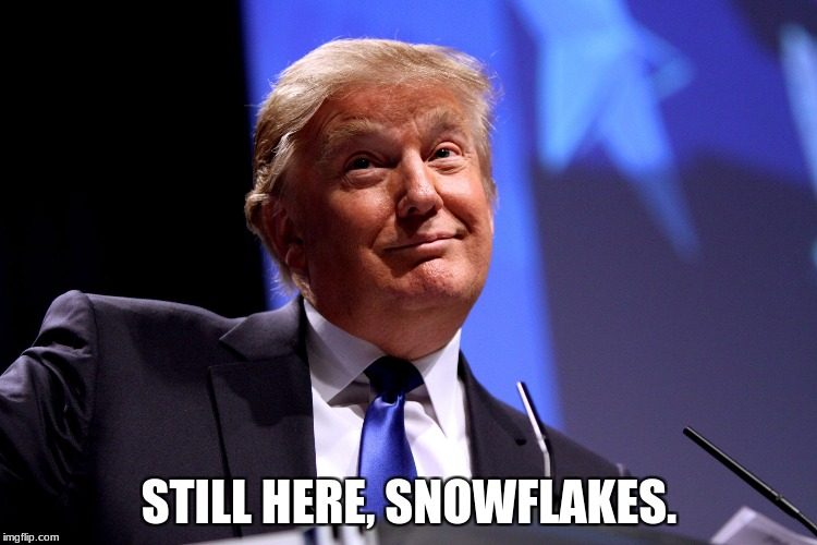 Donald Trump No2 | STILL HERE, SNOWFLAKES. | image tagged in donald trump no2 | made w/ Imgflip meme maker
