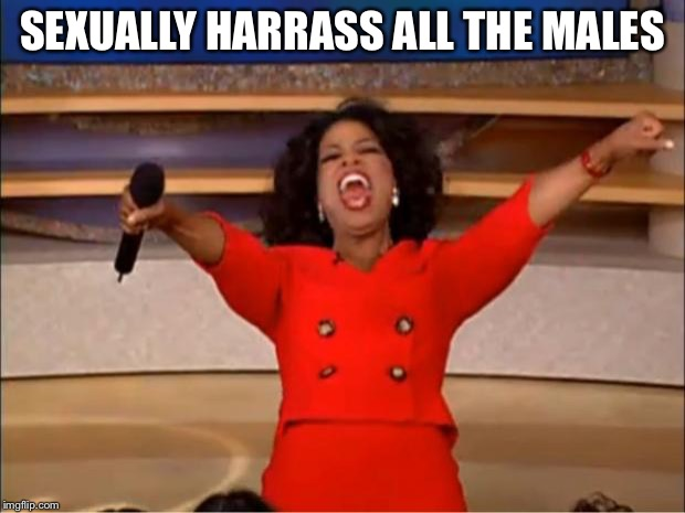 Oprah You Get A Meme | SEXUALLY HARRASS ALL THE MALES | image tagged in memes,oprah you get a | made w/ Imgflip meme maker