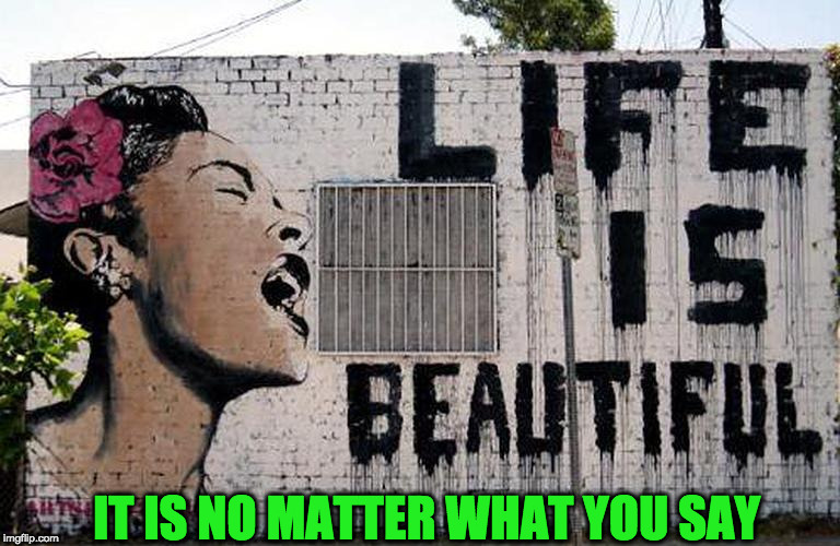 Life is truly beautiful! | IT IS NO MATTER WHAT YOU SAY | image tagged in life,beautiful,happy | made w/ Imgflip meme maker