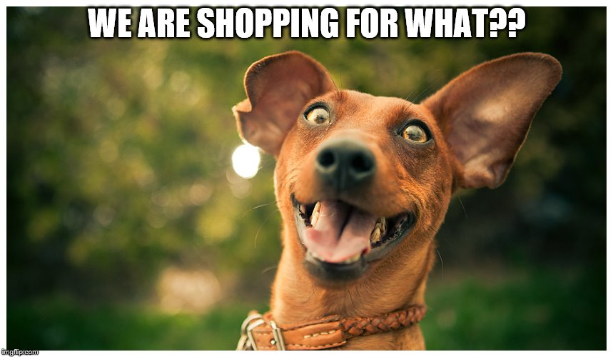 WE ARE SHOPPING FOR WHAT?? | image tagged in it's almost holiday time | made w/ Imgflip meme maker