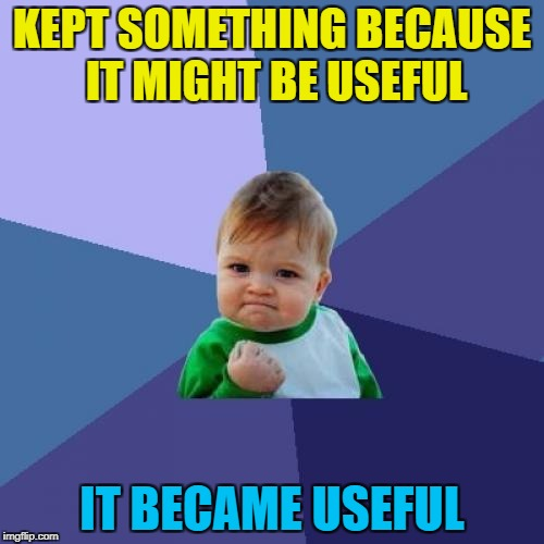 I used an old CD tower to try and straiten a cactus :) | KEPT SOMETHING BECAUSE IT MIGHT BE USEFUL IT BECAME USEFUL | image tagged in memes,success kid,hoarding,recycling,cactus,plants | made w/ Imgflip meme maker