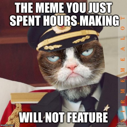 Cat-Pain Obvious | THE MEME YOU JUST SPENT HOURS MAKING WILL NOT FEATURE | image tagged in cat-pain obvious,memes,captain obvious,grumpy cat | made w/ Imgflip meme maker
