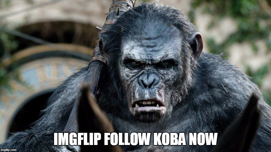 Had to do it sooner or later. | IMGFLIP FOLLOW KOBA NOW | image tagged in imgflip,memes,movie week | made w/ Imgflip meme maker