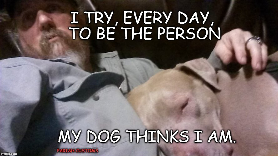 be the person | I TRY, EVERY DAY, TO BE THE PERSON MY DOG THINKS I AM. PARIAH CUSTOMS | image tagged in dog,petey pibble,good human | made w/ Imgflip meme maker