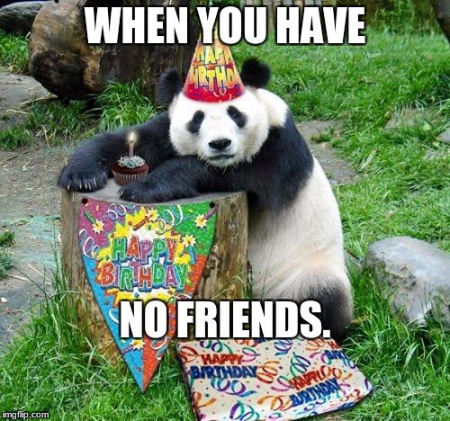 Panda Birthday | WHEN YOU HAVE NO FRIENDS. | image tagged in panda birthday | made w/ Imgflip meme maker