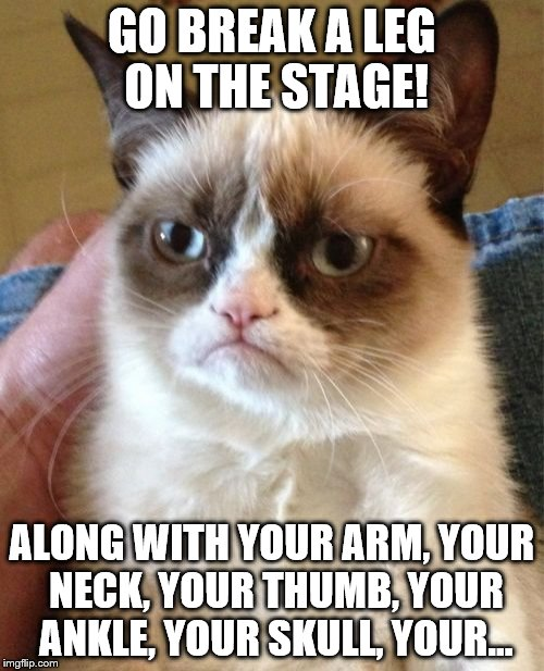 Grumpy Cat Meme | GO BREAK A LEG ON THE STAGE! ALONG WITH YOUR ARM, YOUR NECK, YOUR THUMB, YOUR ANKLE, YOUR SKULL, YOUR... | image tagged in memes,grumpy cat | made w/ Imgflip meme maker