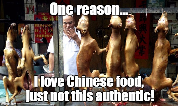 One reason... I love Chinese food, just not this authentic! | made w/ Imgflip meme maker