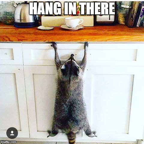 HANG IN THERE | image tagged in deadlines | made w/ Imgflip meme maker