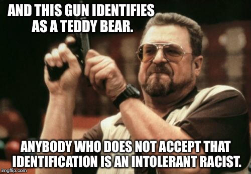 Am I The Only One Around Here Meme | AND THIS GUN IDENTIFIES AS A TEDDY BEAR. ANYBODY WHO DOES NOT ACCEPT THAT IDENTIFICATION IS AN INTOLERANT RACIST. | image tagged in memes,am i the only one around here | made w/ Imgflip meme maker