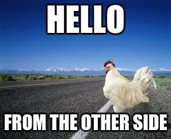 Why the chicken Cross the road | HELLO FROM THE OTHER SIDE | image tagged in why the chicken cross the road | made w/ Imgflip meme maker