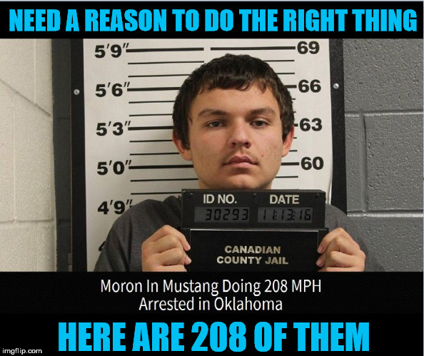 208 Reasons | NEED A REASON TO DO THE RIGHT THING HERE ARE 208 OF THEM | image tagged in 208 reasons,dude you're an idiot,i now have time to think about it,fast and furious moran,going to jail really fast,208 mph to j | made w/ Imgflip meme maker