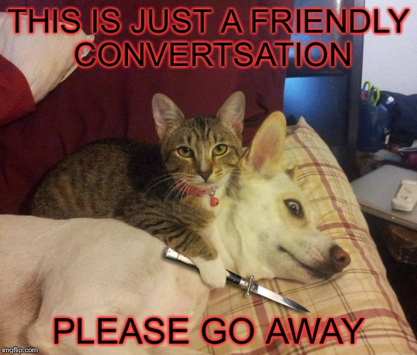 cat, dog & knife | THIS IS JUST A FRIENDLY CONVERTSATION PLEASE GO AWAY | image tagged in cat,dog  knife | made w/ Imgflip meme maker