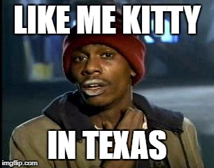 Y'all Got Any More Of That Meme | LIKE ME KITTY IN TEXAS | image tagged in memes,yall got any more of | made w/ Imgflip meme maker
