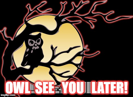 See ya later! | OWL  SEE   YOU   LATER! | image tagged in owl,full moon | made w/ Imgflip meme maker