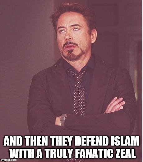 Face You Make Robert Downey Jr Meme | AND THEN THEY DEFEND ISLAM WITH A TRULY FANATIC ZEAL | image tagged in memes,face you make robert downey jr | made w/ Imgflip meme maker