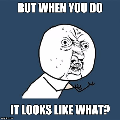 Y U No Meme | BUT WHEN YOU DO IT LOOKS LIKE WHAT? | image tagged in memes,y u no | made w/ Imgflip meme maker