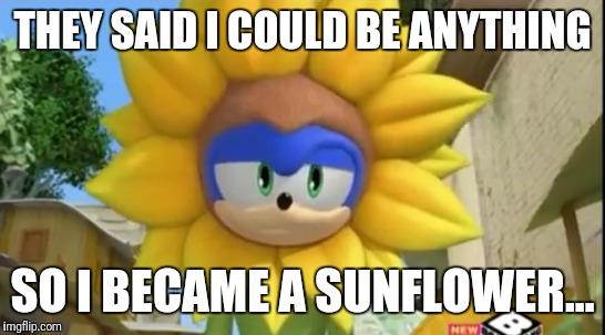 Sonic the Sunflower | THEY SAID I COULD BE ANYTHING SO I BECAME A SUNFLOWER... | image tagged in sonic boom | made w/ Imgflip meme maker
