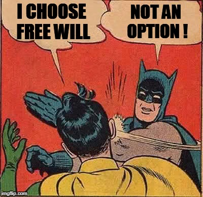 Batman Slapping Robin Meme | I CHOOSE FREE WILL NOT AN OPTION ! | image tagged in memes,batman slapping robin | made w/ Imgflip meme maker
