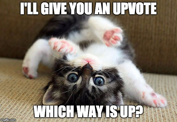 I'LL GIVE YOU AN UPVOTE WHICH WAY IS UP? | made w/ Imgflip meme maker