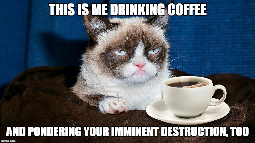 THIS IS ME DRINKING COFFEE AND PONDERING YOUR IMMINENT DESTRUCTION, TOO | made w/ Imgflip meme maker