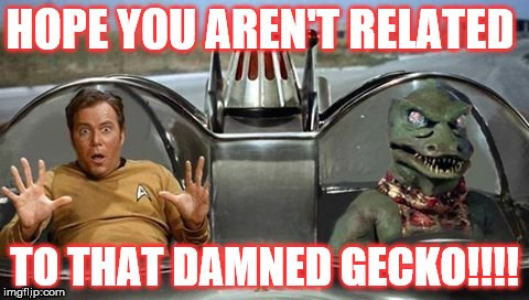 KirkGecko | image tagged in captain kirk | made w/ Imgflip meme maker