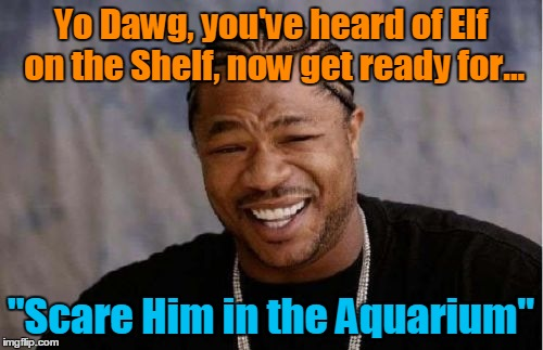 "Yo Dawg Heard You Meme | Yo Dawg, you've heard of Elf on the Shelf, now get ready for... ""Scare Him in the Aquarium"" 