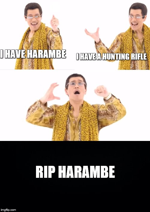 PPAP Meme | I HAVE HARAMBE I HAVE A HUNTING RIFLE RIP HARAMBE | image tagged in memes,ppap | made w/ Imgflip meme maker