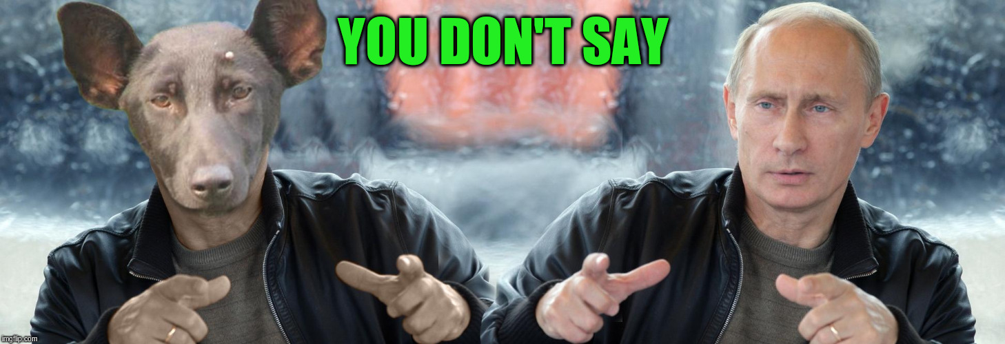 YOU DON'T SAY | made w/ Imgflip meme maker