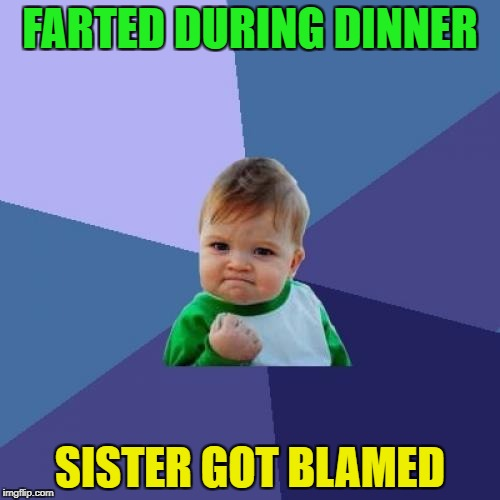 Success Kid Meme | FARTED DURING DINNER SISTER GOT BLAMED | image tagged in memes,success kid | made w/ Imgflip meme maker