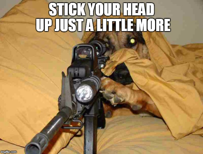 STICK YOUR HEAD UP JUST A LITTLE MORE | made w/ Imgflip meme maker