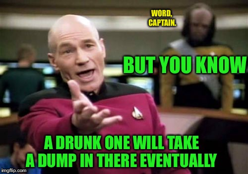 Picard Wtf Meme | BUT YOU KNOW A DRUNK ONE WILL TAKE A DUMP IN THERE EVENTUALLY WORD, CAPTAIN. | image tagged in memes,picard wtf | made w/ Imgflip meme maker