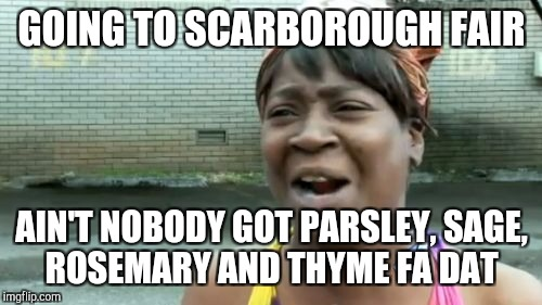 Aint Nobody Got Time For That Meme | GOING TO SCARBOROUGH FAIR AIN'T NOBODY GOT PARSLEY, SAGE, ROSEMARY AND THYME FA DAT | image tagged in memes,aint nobody got time for that | made w/ Imgflip meme maker