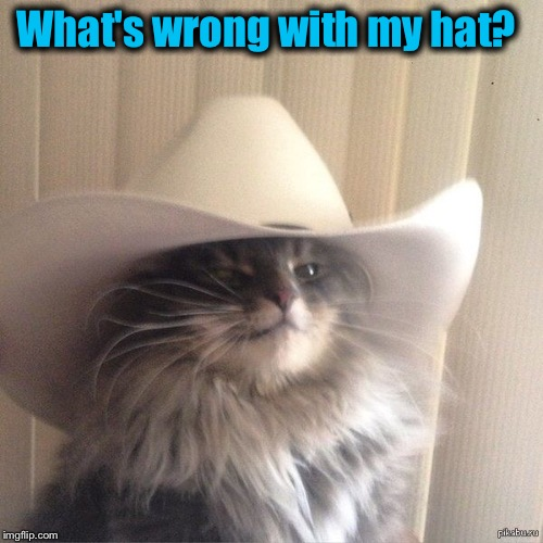 What's wrong with my hat? | made w/ Imgflip meme maker