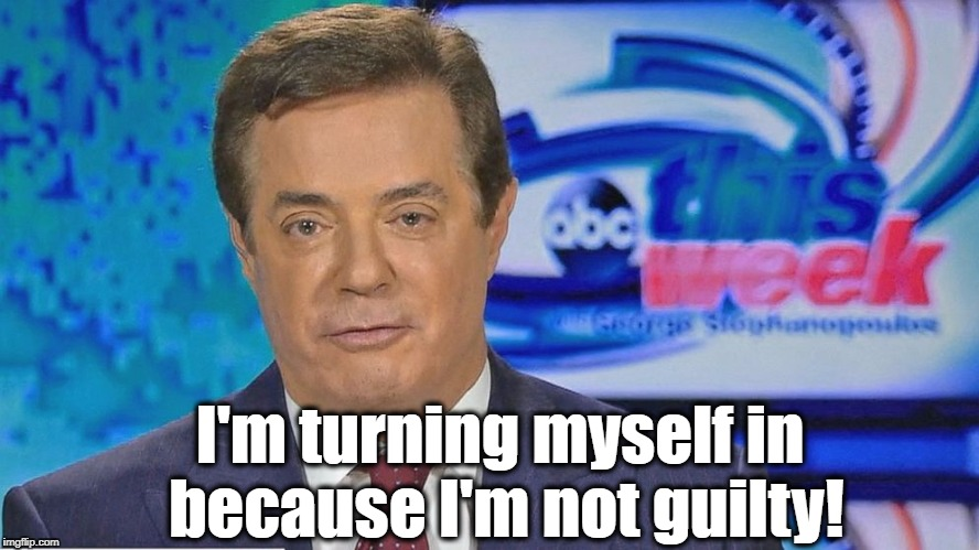 Paul Manafort will be vindicated!  | I'm turning myself in because I'm not guilty! | image tagged in paul manafort,not guilty,no collusion | made w/ Imgflip meme maker