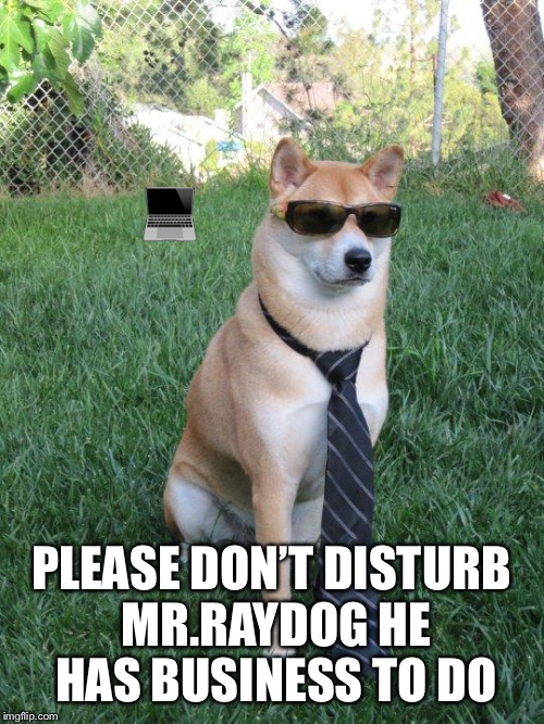 Business doge | image tagged in business doge | made w/ Imgflip meme maker