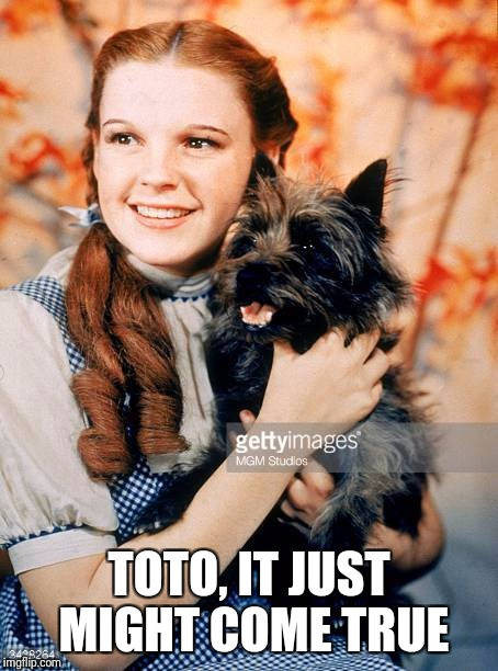 TOTO, IT JUST MIGHT COME TRUE | made w/ Imgflip meme maker