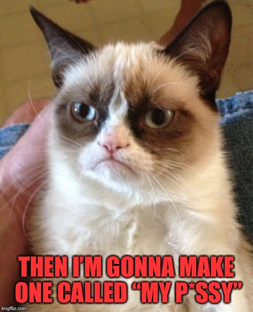 "Grumpy Cat Meme | THEN I'M GONNA MAKE ONE CALLED ""MY P*SSY"" 