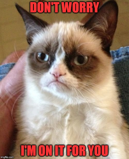 Grumpy Cat Meme | DON'T WORRY I'M ON IT FOR YOU | image tagged in memes,grumpy cat | made w/ Imgflip meme maker