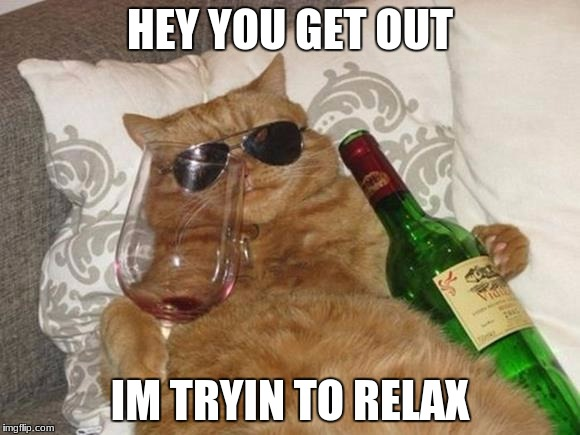 Funny Cat Birthday | HEY YOU GET OUT IM TRYIN TO RELAX | image tagged in funny cat birthday | made w/ Imgflip meme maker