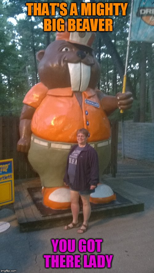 THAT'S A MIGHTY BIG BEAVER YOU GOT THERE LADY | image tagged in beaver,jokes | made w/ Imgflip meme maker