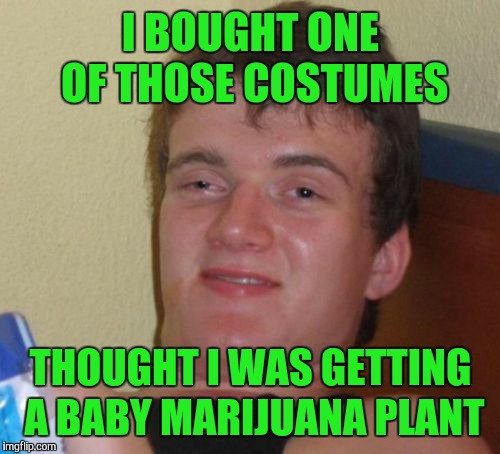 10 Guy Meme | I BOUGHT ONE OF THOSE COSTUMES THOUGHT I WAS GETTING A BABY MARIJUANA PLANT | image tagged in memes,10 guy | made w/ Imgflip meme maker
