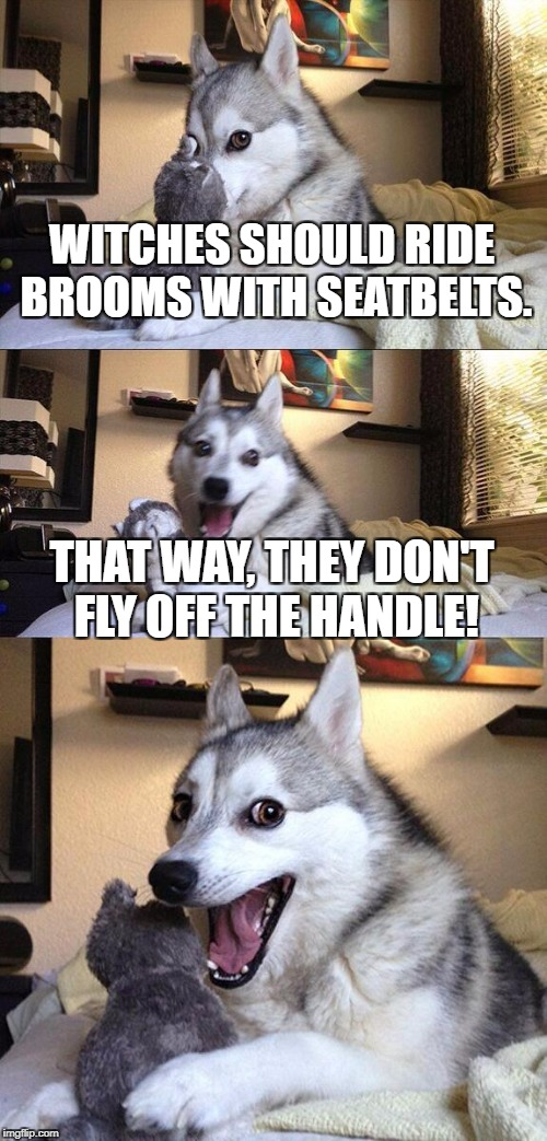 Bad Pun Dog Meme | WITCHES SHOULD RIDE BROOMS WITH SEATBELTS. THAT WAY, THEY DON'T FLY OFF THE HANDLE! | image tagged in memes,bad pun dog,halloween,witches,broom | made w/ Imgflip meme maker