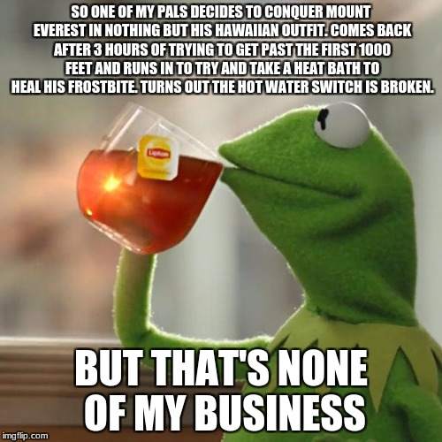Why Would You Even Be This Idiotic? | SO ONE OF MY PALS DECIDES TO CONQUER MOUNT EVEREST IN NOTHING BUT HIS HAWAIIAN OUTFIT. COMES BACK AFTER 3 HOURS OF TRYING TO GET PAST THE FI | image tagged in memes,but thats none of my business,kermit the frog,mount everest | made w/ Imgflip meme maker