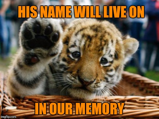 HIS NAME WILL LIVE ON IN OUR MEMORY | made w/ Imgflip meme maker