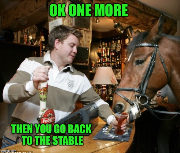 OK ONE MORE THEN YOU GO BACK TO THE STABLE | made w/ Imgflip meme maker