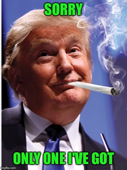Trump Weed | SORRY ONLY ONE I'VE GOT | image tagged in trump weed | made w/ Imgflip meme maker