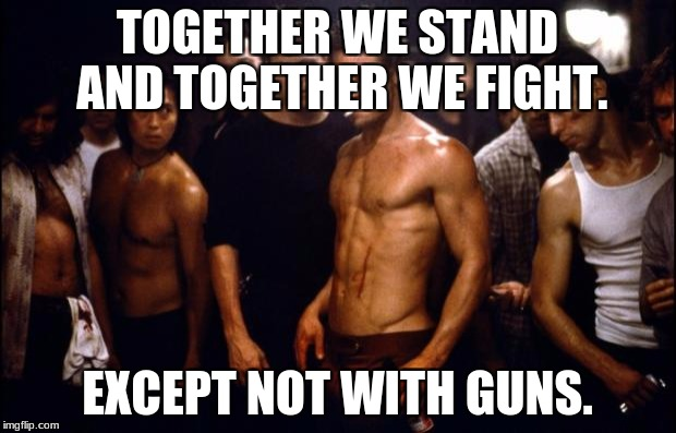Fight Club Template  | TOGETHER WE STAND AND TOGETHER WE FIGHT. EXCEPT NOT WITH GUNS. | image tagged in fight club template | made w/ Imgflip meme maker