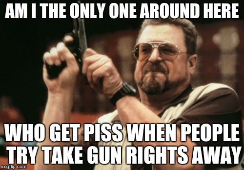 Am I The Only One Around Here Meme | AM I THE ONLY ONE AROUND HERE WHO GET PISS WHEN PEOPLE TRY TAKE GUN RIGHTS AWAY | image tagged in memes,am i the only one around here | made w/ Imgflip meme maker
